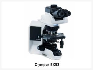 편리한 수동조작 정립현미경,쉬운 사용법과 인체공학적 디자인,암시야부터 고급형광 Application등에 적합한 환경제공미래 지향적 모듈화 된 현미경,Eco기능 내장으로 전기료 절감 및 안정성 향상,OLYMPUS BX53은 뛰어난 광학 설계인 UIS2 광학 설계에 보다 효율적인 형광 영상을 얻을 수 있도록 개선된 디자인으로 새롭게 출시된 현미경 입니다.,명시야부터 형광이미지 까지 최고의 성능으로 최상의 이미지를 얻을 수 있으며 또한 Eco 기능을 통해 자동으로 전원을 차단하여 관공서와 국가기관에서 전기효율을 높일 수 있는 환경 친화적인 현미경 입니다.