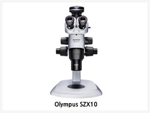 줌배율 10:1로 고배율 줌 가능, 자동화 유닛과 연동시켜 편리하게 조작 가능, 다양한 모듈을 장착하여 유저가 원하는 Application 사용 가능, OLYMPUS SZX10는 샘플의 선택, 분리시 10:1의 광학을 구현 피로도를 낮춘 인체공학적 디자인을 통해 넓은 광시야에서 샘플을 편안하게 조작 하실 수 있는 올림푸스 최고의 실체 현미경 입니다.